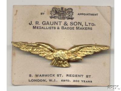 Pathfinder badge?? - British & Commonwealth Military Badge Forum